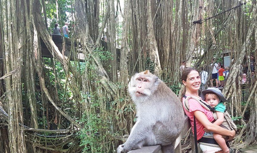 monkey-forest-em-ubud